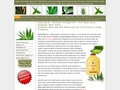 natural-aloevera.ro